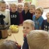 Tygryski robiły sok z jabłuszek.