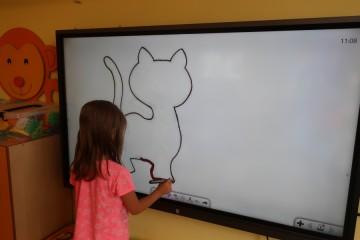Dzień kota – poznanie życia kota, tworzenie kotów z różnych materiałów