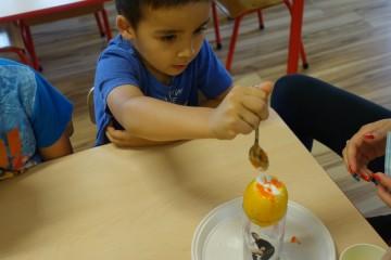 Dzień chemika - eksperymenty z zastosowaniem produktów dostępnych w kuchni