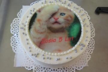 Urodziny Zosi Ch.