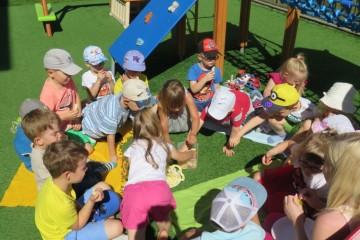 Misie miło spędzały czas w ogrodzie przedszkolnym 26.08.16