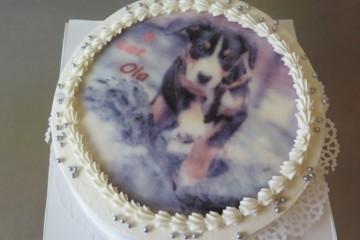 Urodziny Oli L.