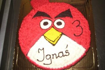Urodziny Ignasia
